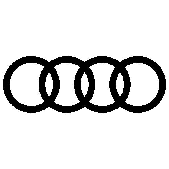 2021 Audi Logo